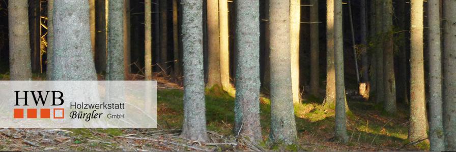 Schweizer Holz verwenden